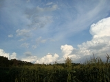 長野の夏空